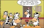 finn_cows