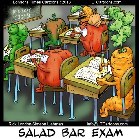 Image result for Bar Exam